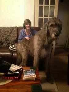 perros enormes 12