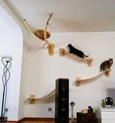 campo de juegos para gatos 10